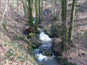 Point d'intérêt Ham-sur-Heure-Nalinnes - Bois Communal - Photo 1