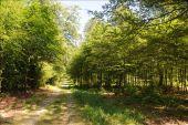 Point d'intérêt Florenville - A découvrir à proximité - Photo 1