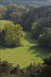 Point d'intérêt Rochefort - Belvédère - Panorama - Photo 1