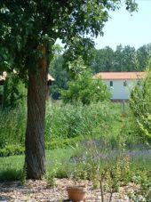 Point d'intérêt Rochefort - Malagne la Gallo-Romaine - Photo 2