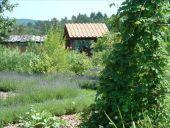 Point d'intérêt Rochefort - Malagne la Gallo-Romaine - Photo 3