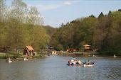 Point d'intérêt Ciney - Domaine Provincial de Chevetogne - Photo 2