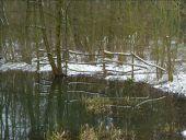 Point d'intérêt Braine-l'Alleud - Mare - Photo 1