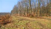 place MONTGOBERT - Point 31 - Photo 1
