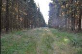 place Manhay - 4 – Exclos en forêt - Photo 1