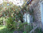 place La Roche-en-Ardenne - Bérismenil - Photo 1