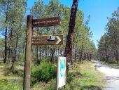 Point d'intérêt LEGE-CAP-FERRET - aire du Grand Crohot - Photo 1