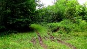 place PUISEUX-EN-RETZ - Point 22 - Photo 4