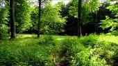 place PUISEUX-EN-RETZ - Point 19 - Photo 1