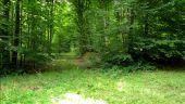 place PUISEUX-EN-RETZ - Point 22 - Photo 3