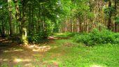 place PUISEUX-EN-RETZ - Point 23 - Photo 2