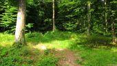 place PUISEUX-EN-RETZ - Point 19 - Photo 2