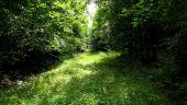 place PUISEUX-EN-RETZ - Point 22 - Photo 5