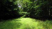 place PUISEUX-EN-RETZ - Point 22 - Photo 1