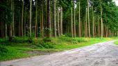 place MONTGOBERT - Point 3 - Photo 5