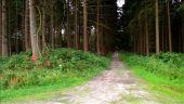 place MONTGOBERT - Point 4 - Photo 2