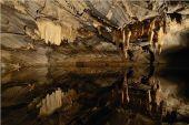 Point d'intérêt Rochefort - Domaine des Grottes de Han - Photo 3