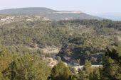 place LE THOLONET - Paysage de Provence - Photo 1