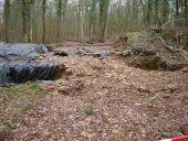 Point d'intérêt Viroinval - Ancienne plateforme celtique (sur les Sangles)  - Photo 1