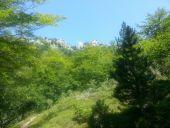 place PRATS-DE-MOLLO-LA-PRESTE - Point 1 - Photo 1