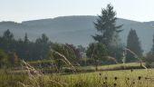 place Wellin - Point de vue de Molinchamps - Photo 1