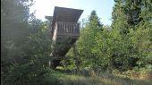 place Saint-Hubert - Site LIFE de la Borne - Photo 4