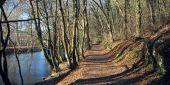 place Tellin - La Lesse  - Photo 1