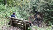 Point d'intérêt Tenneville - Forêt de Saint-Hubert - Photo 1