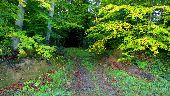 place DAMPLEUX - Point 15 - Photo 2