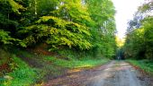 place DAMPLEUX - Point 15 - Photo 3
