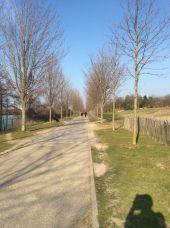 Point d'intérêt COLOMBES - Promenade bleue 55 virtuel  - Photo 1