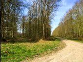 Point d'intérêt SAINT-PIERRE-AIGLE - Point 23 - Photo 4