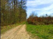 Point d'intérêt SAINT-PIERRE-AIGLE - Point 23 - Photo 2