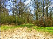 Point d'intérêt SAINT-PIERRE-AIGLE - Point 25 - Photo 2