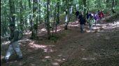 place STOSSWIHR - 17 - La descente de la crête, à 5 mn de l'arrivée au Col de la Schlucht - Photo 1