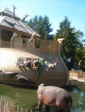 Point d'intérêt Ciney - Domaine Provincial de Chevetogne - Photo 5