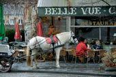 place Rochefort - Rue des Grottes - Photo 1