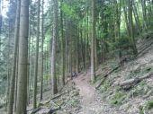 Point d'intérêt OTTROTT - 03 - Sur le magnifique Sentier des Chasseurs - Photo 1