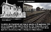place LINGOLSHEIM - Lingolsheim - Photo 5