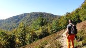 Point d'intérêt SEWEN - Ballon d'Alsace - Photo 1