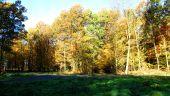 place SAINT-PIERRE-AIGLE - Point 19 - Photo 2