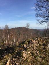place ROSHEIM - Purpurkopf 2 - Photo 1