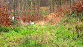 place PUISEUX-EN-RETZ - Point 55 - Photo 3