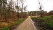 place PUISEUX-EN-RETZ - Point 55 - Photo 7