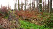 place PUISEUX-EN-RETZ - Point 55 - Photo 4