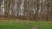 Point d'intérêt VILLERS-COTTERETS - Point 44 - Photo 1
