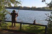 Point d'intérêt Fosses-la-Ville - Le grand étang de Fosses - Photo 1