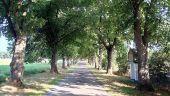 Point d'intérêt Tellin - Le Chemin de la Vierge - Photo 1
