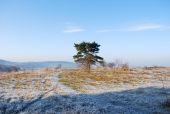 Point d'intérêt Viroinval - Tienne Breumont  - Photo 1