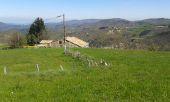 place SAINT-PIERREVILLE - Tauzuc Point de vue - Photo 1
